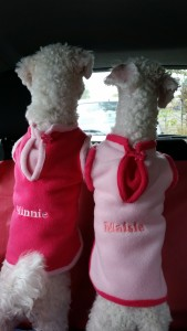 Minnie & Maisie - deanysdesigns.co.uk