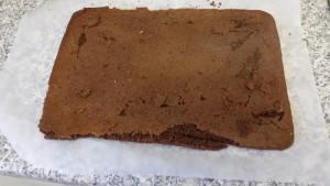 Homemade chocolate Swiss roll - deanysdesigns .co.uk